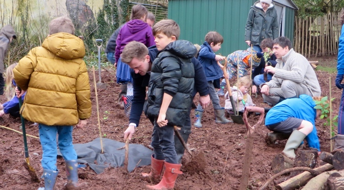 Tree planting at Wiveliscombe Primary School
