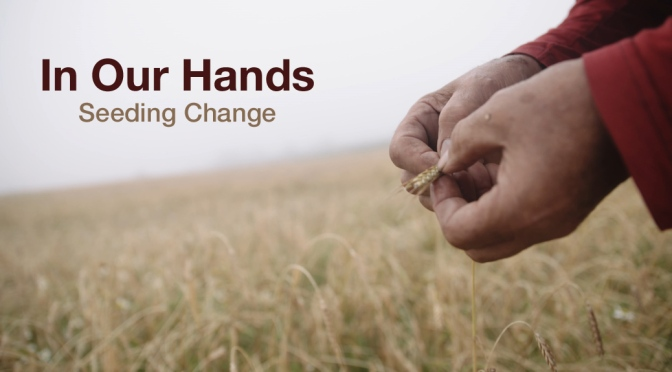 In Our Hands film show
